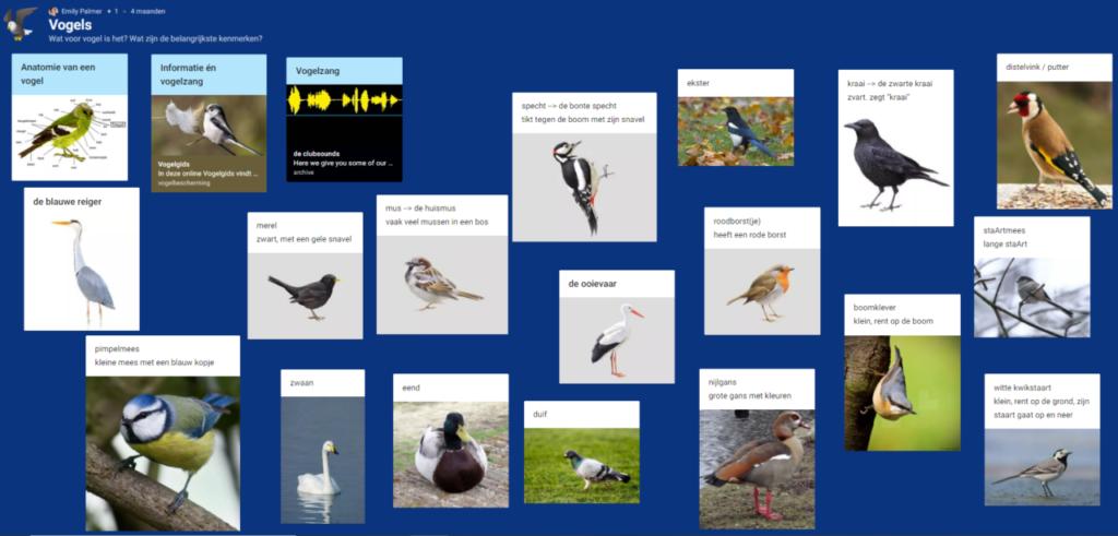 Vogels en jackfruit: een taaltraining op maat
